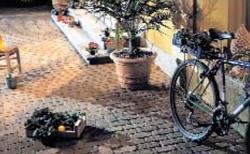 mattoncino-renova.jpg