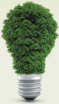 Locandina Impianto a biomasse