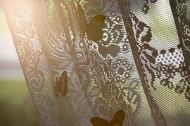 Farfalle come decorazione