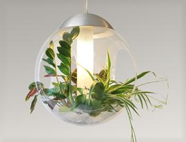 Piante appese al soffitto ~ idee di design nella vostra casa