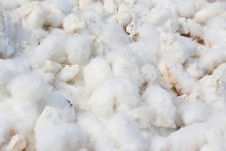Tappeti in fibre naturali o sintetiche for Fibre naturali