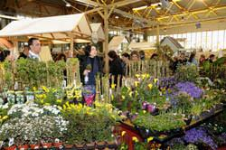 Ortogiardino 2010 e flor art - Fiera giardinaggio ...