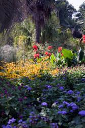 Il giardino mediterraneo for Giardino mediterraneo