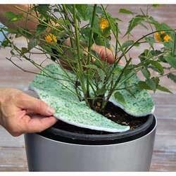 Verdemagic Terralenx disco in tessuto spugna per irrigare le piante