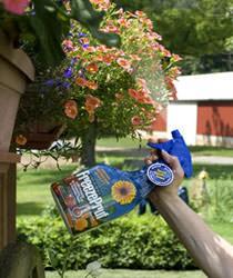 Spray antigelo per piante