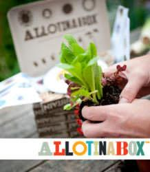 Allotinabox kit per coltivazione orto da casa