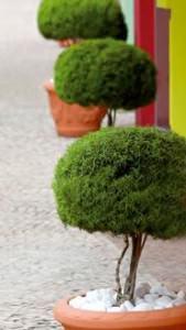 decorazione per il giardino