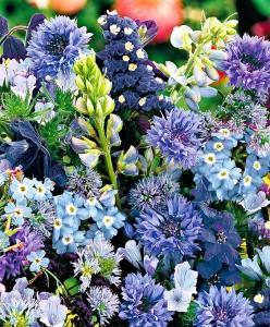 tappeto misto fiori blu