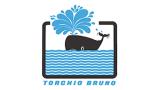 TORCHIO BRUNO Snc