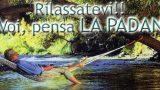 La Padana Traslochi