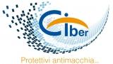 Ciber Srl