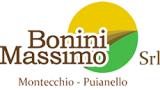 Bonini Massimo Srl