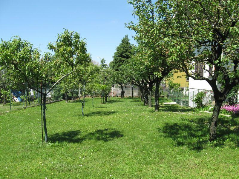 Bifamiliare indipendente con ampio giardino 4