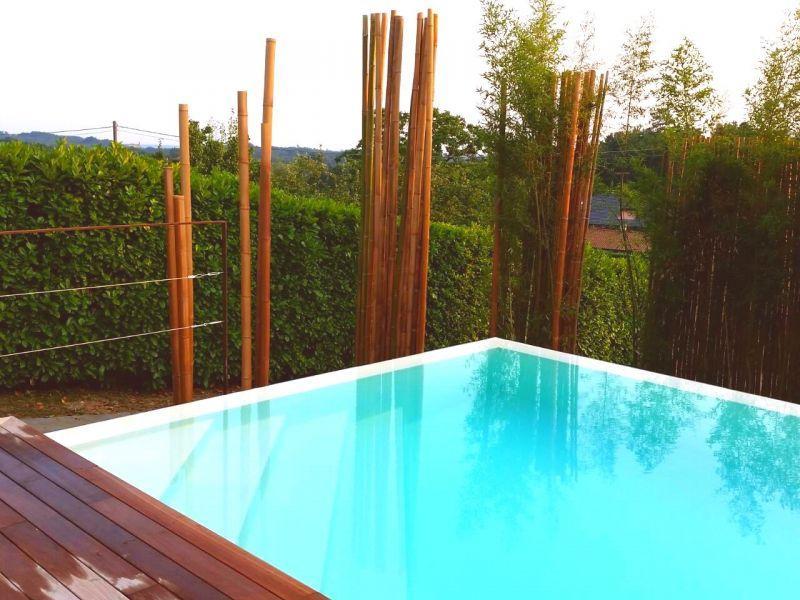 In vendita canne di bambu con diametri da 1 a 10 cm. 4