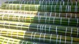 Thumbnail In vendita canne di bambu con diametri da 1 a 10 cm. 2