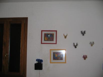 Muffa su parete