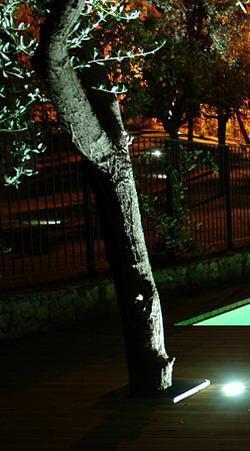 Illuminare il verde:illuminazione del singolo albero con faro  dal basso incassato