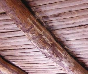 Rafforzamento dei solai in legno for Costo delle travi a vista