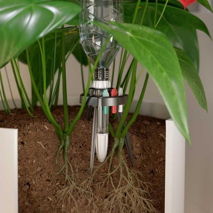 Irrigazione a goccia nelle piane da fiore da interno con Idris