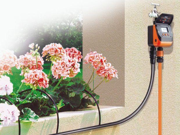 Piante a fioritura primaverile - Irrigazione balcone ...