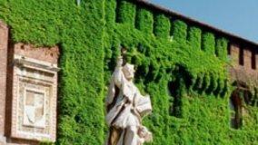 Pareti come giardini verticali ornamentali
