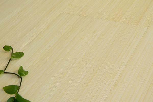 Pavimenti In Vinile Opinioni : Pavimenti in bamboo opinioni. trendy parquet bamboo bagno with