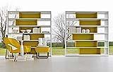 libreria Sistema 505 di Molteni&C