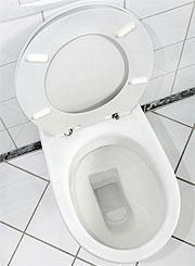 Sostituire il wc water closet - Tazza del bagno ...