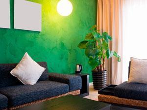 Cure piante d'appartamento