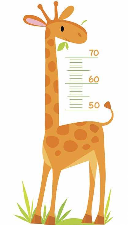 Metro Giraffa misura altezza bambini per camerette