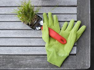 inverno orto giardino