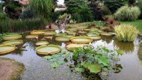 Saluzzo inedita: visita al giardino botanico