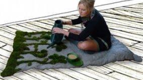 Tappeti e divani vegetali