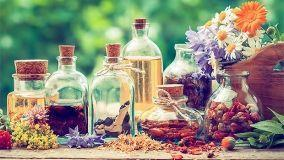 Cure omeopatiche per piante