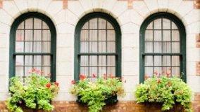 Alterazione del decoro architettonico e poteri dell'amministratore