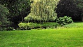 È legittima la trasformazione di parte del giardino in parcheggio condominiale?