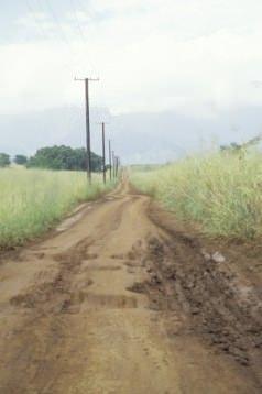 Sentiero e servitù