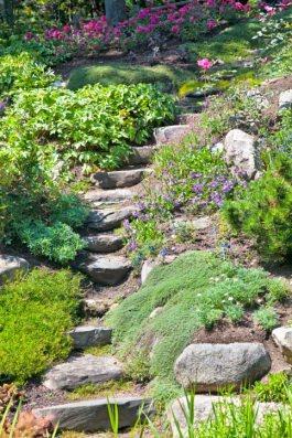 tipologie giardini