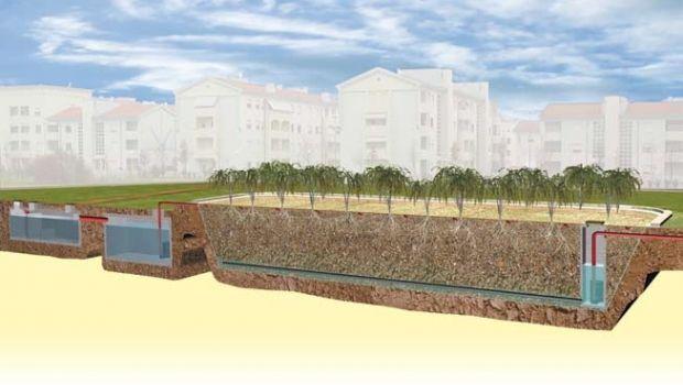 Impianto di fitodepurazione per il trattamento delle acque reflue