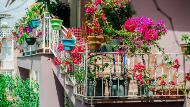 Come realizzare un giardino o un orto sul terrazzo - Come realizzare un giardino verticale ...