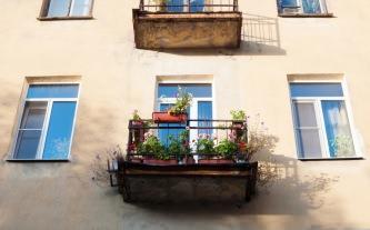 fiori e piante sul balcone