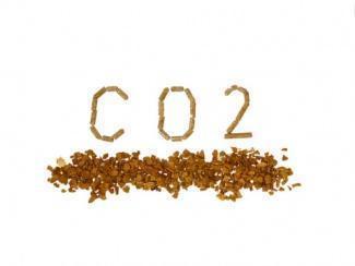 agroenergia e biomassa
