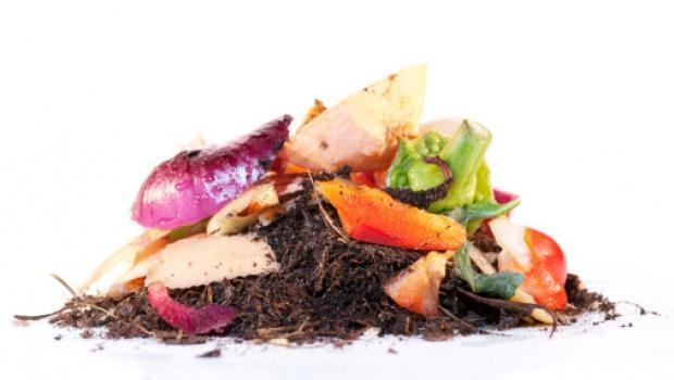 Compost step by step, tutto quello che c'è da sapere