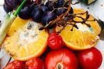 Compost verdure e scarti alimentari