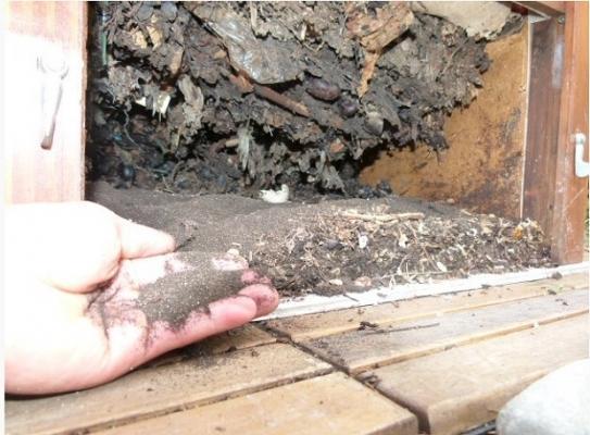 Compost domestico di Kompost.com