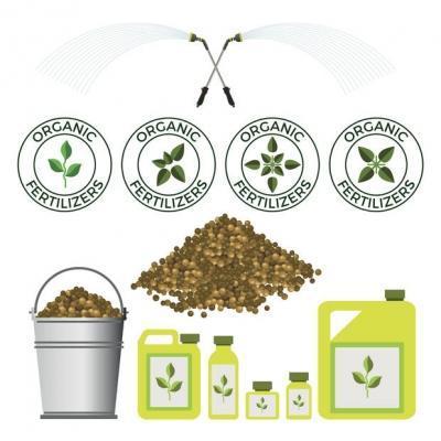 Compost per piante organico