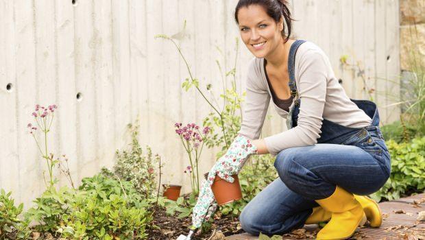 Lavori in giardino di aprile - Lavori in casa forum ...