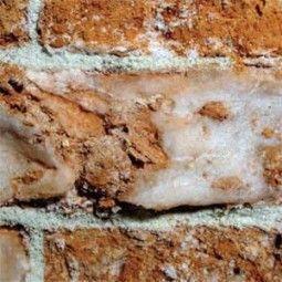 estrattori di sali solubili-3 (di Dry Wall System S.r.l.)