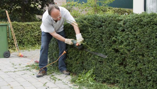Lavori in giardino di maggio - Lavori in giardino ...
