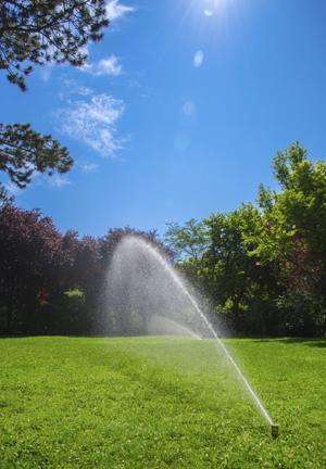 irrigazione giardino di luglio